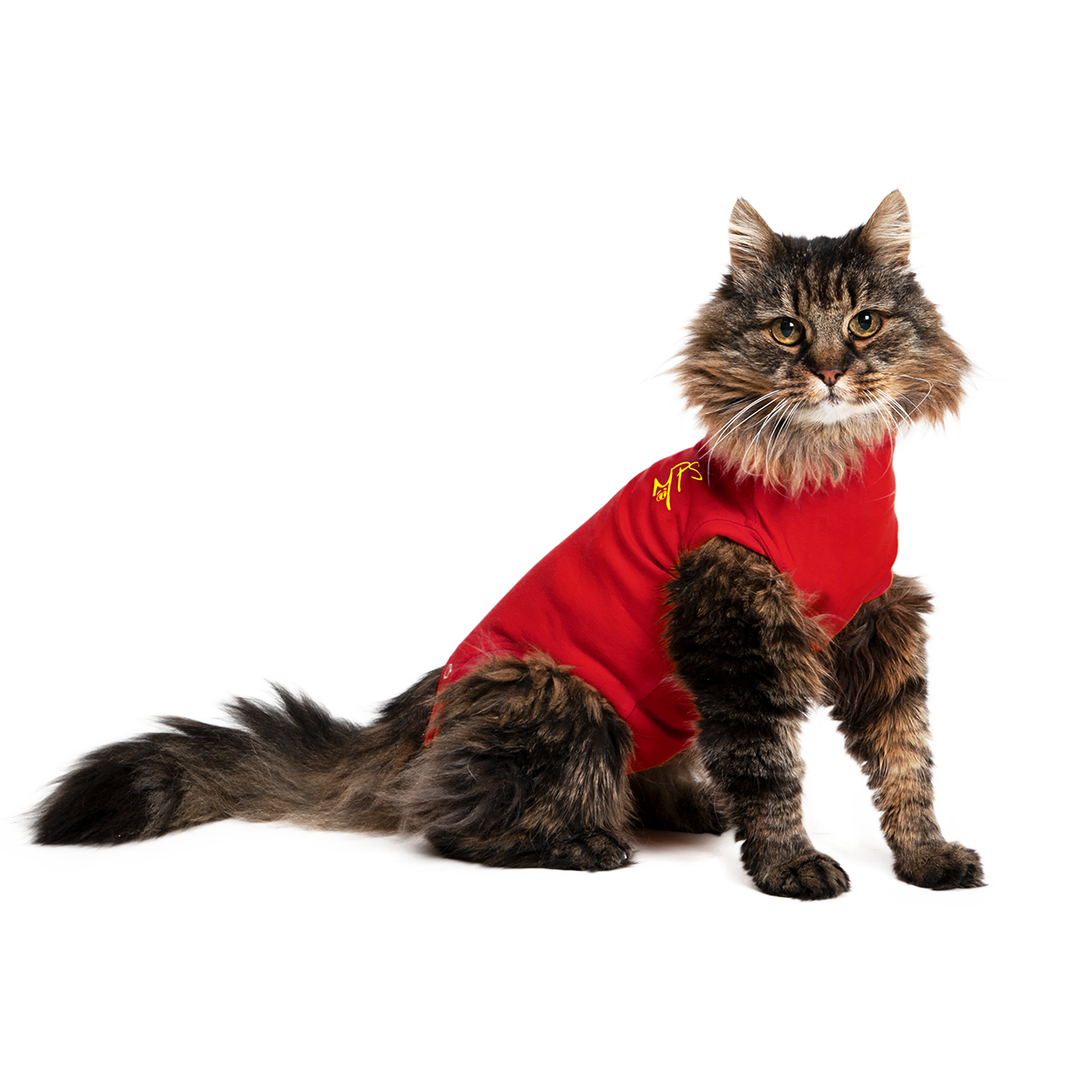 MPS-MEDICAL PET SHIRT® KAT
