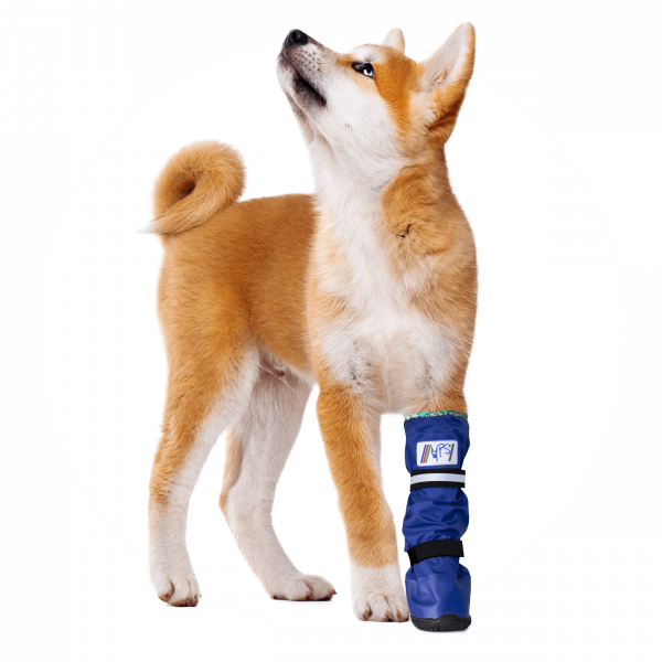 MPS-MEDICAL PETS BOOT® HOND