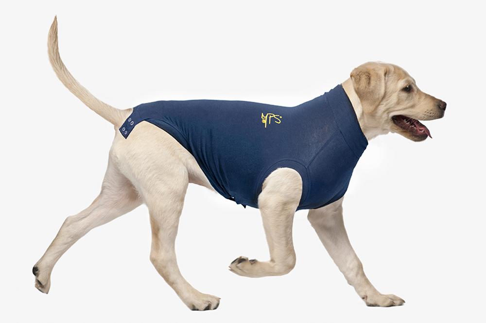 dog shirt holdup system