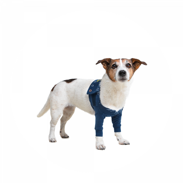 MPS-TAZ2® DOUBLE FRONT LEG SLEEVES CHIEN