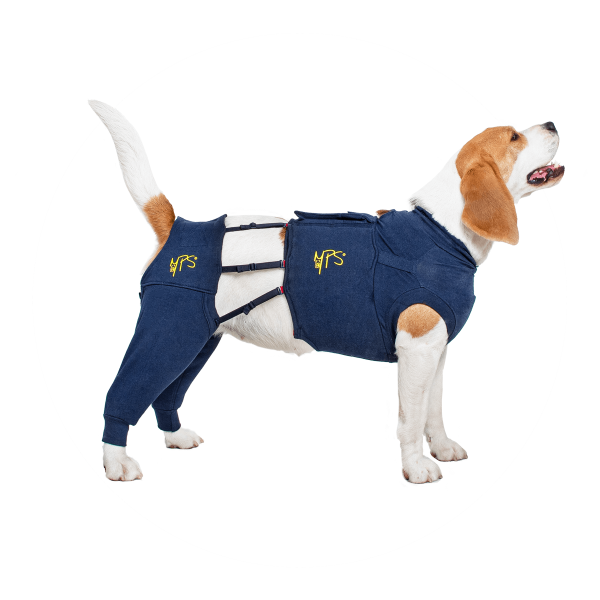MPS-HLS® HIND LEG SLEEVES CHIEN