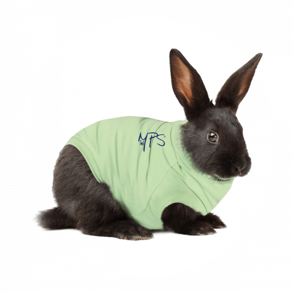 MPS-MEDICAL PET SHIRT® KONIJN